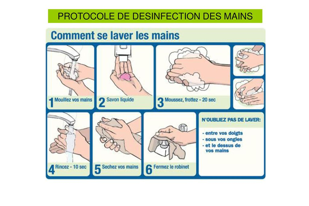 PROTOCOLE DE DESINFECTION DES MAINS