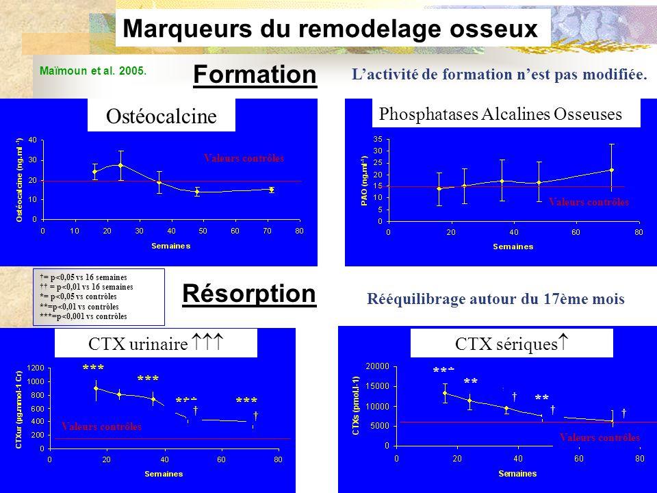 Marqueurs du remodelage osseux Rééquilibrage autour du 17ème mois
