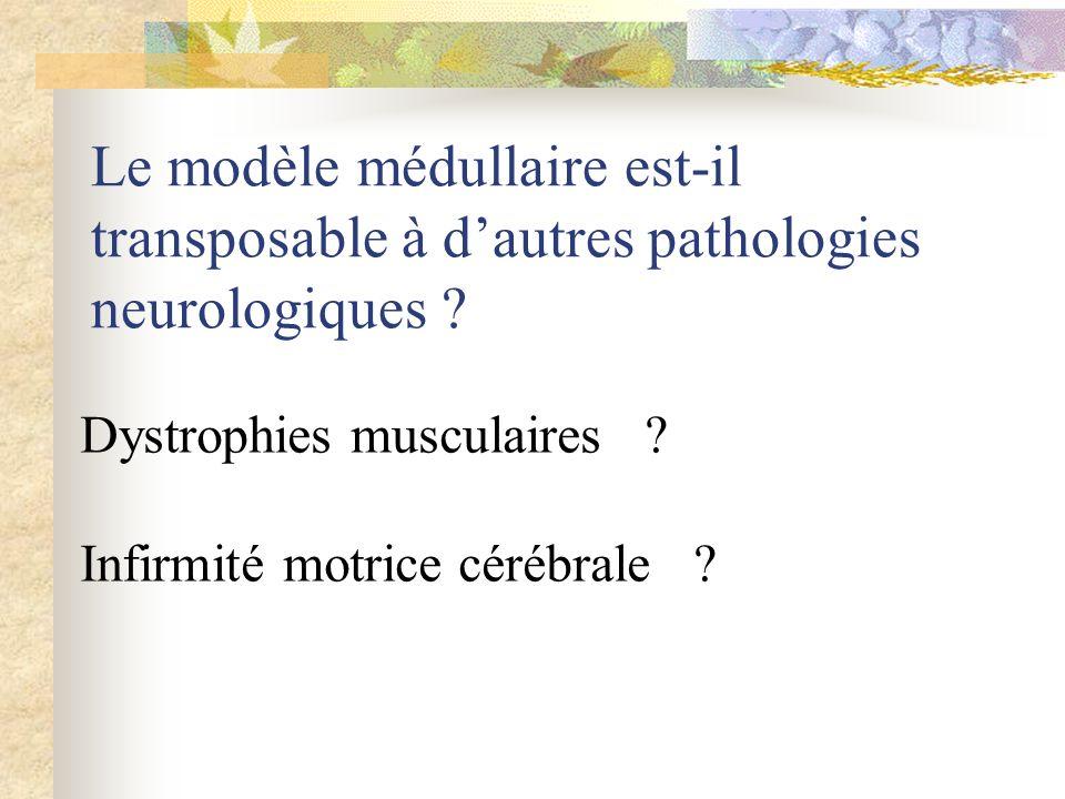 Le modèle médullaire est-il transposable à d'autres pathologies neurologiques