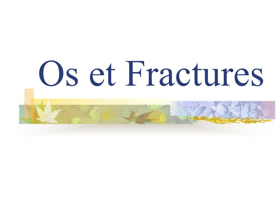 Os et Fractures