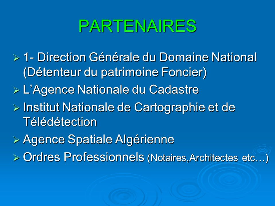 PARTENAIRES 1- Direction Générale du Domaine National (Détenteur du patrimoine Foncier) L'Agence Nationale du Cadastre.