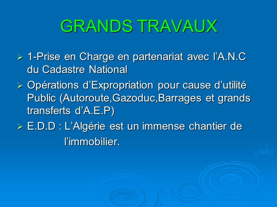 GRANDS TRAVAUX 1-Prise en Charge en partenariat avec l'A.N.C du Cadastre National.