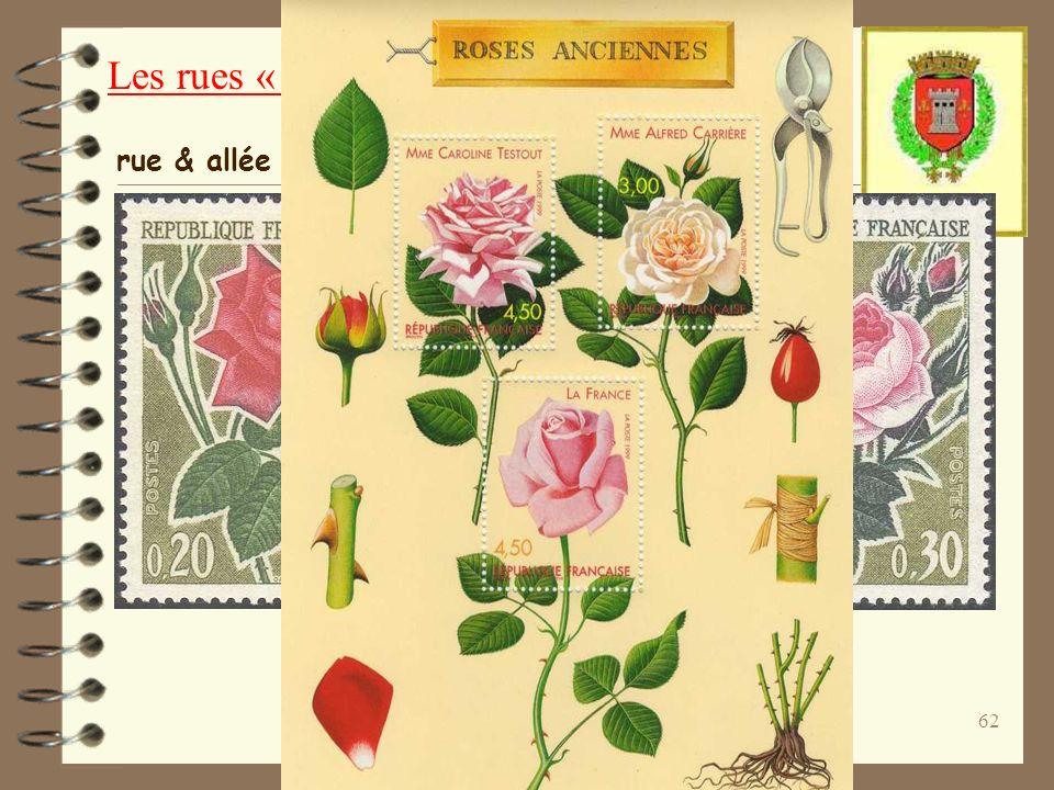 Fleur du rosier ou grand vitrail d église, de forme circulaire.