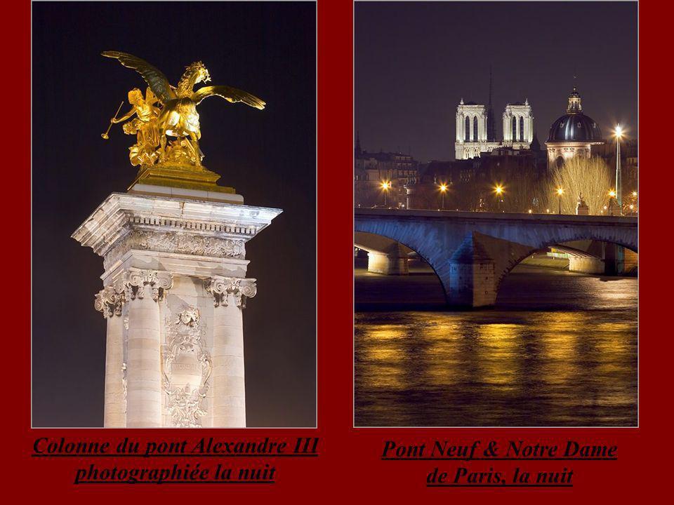 Colonne du pont Alexandre III photographiée la nuit