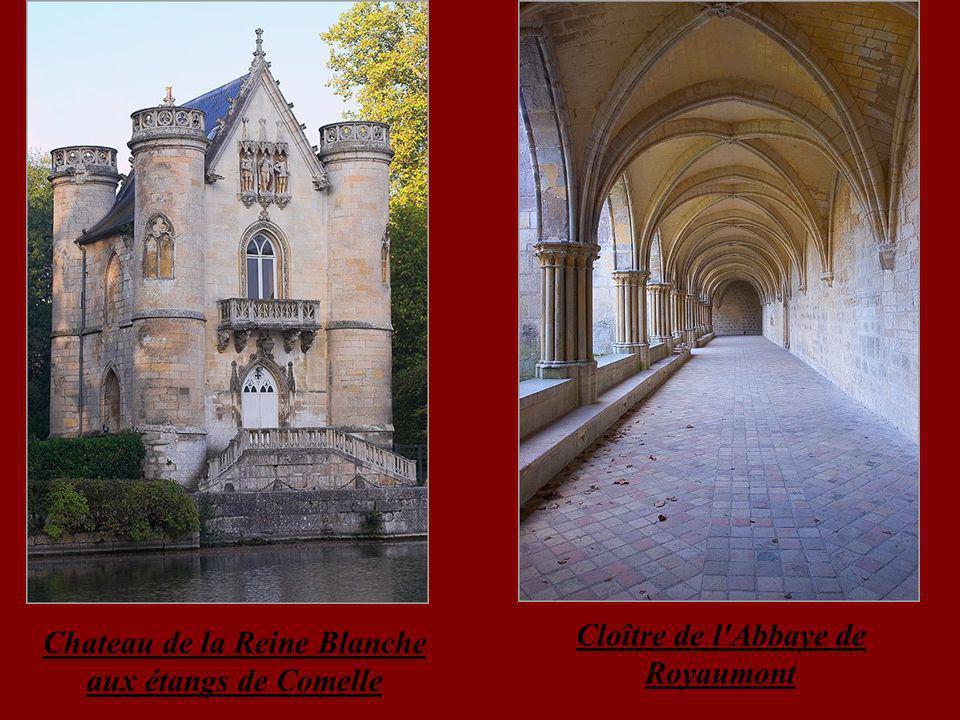 Chateau de la Reine Blanche