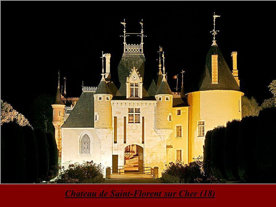Chateau de Saint-Florent sur Cher (18)
