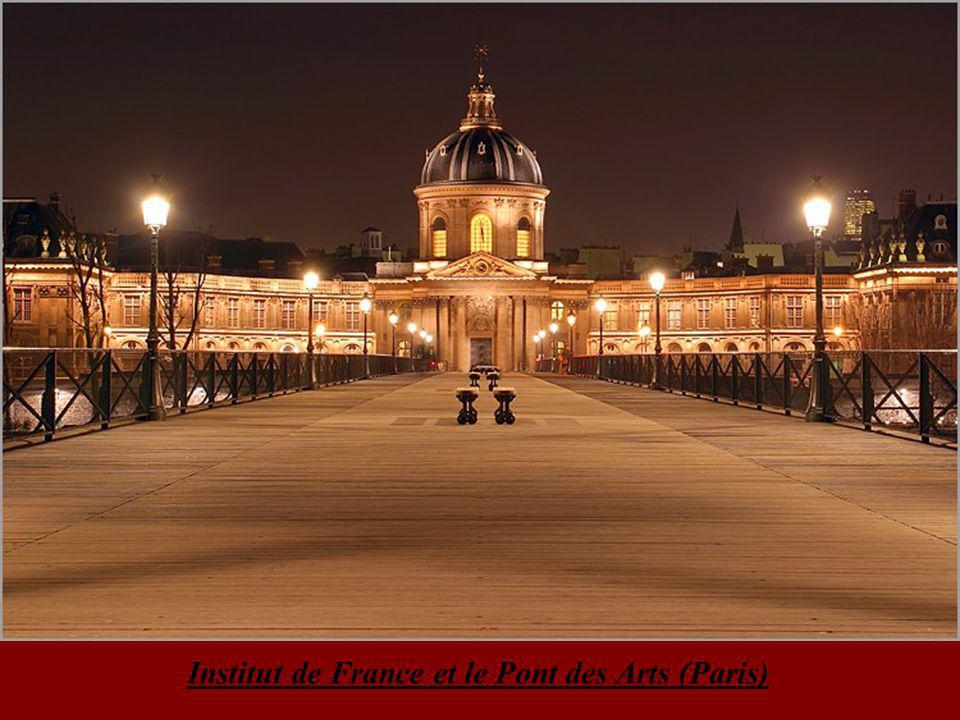 Institut de France et le Pont des Arts (Paris)