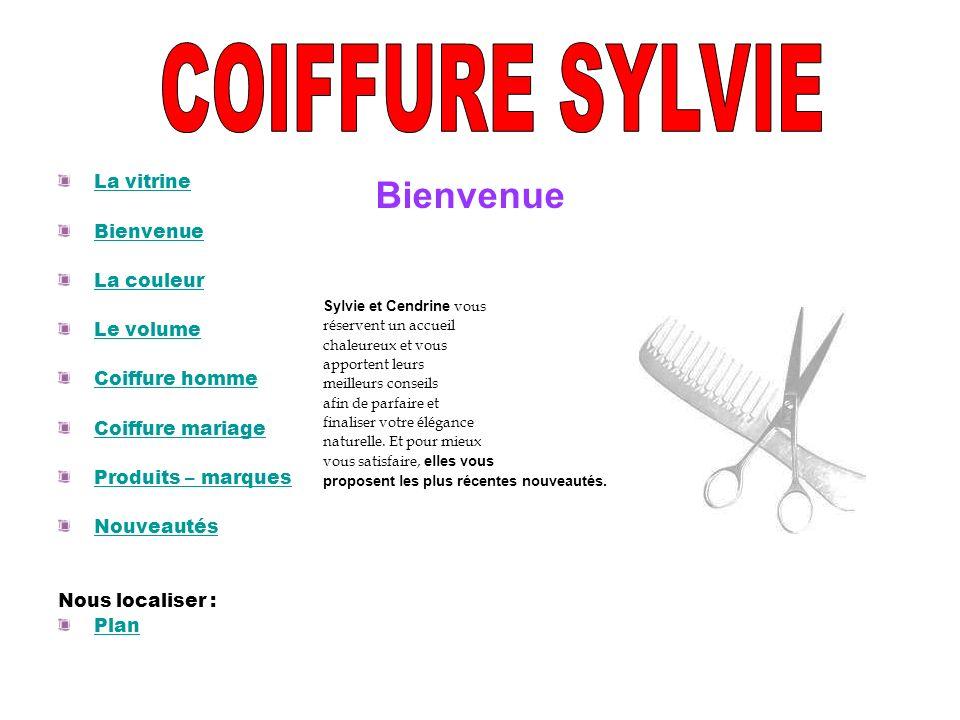 COIFFURE SYLVIE Bienvenue La vitrine Bienvenue La couleur Le volume