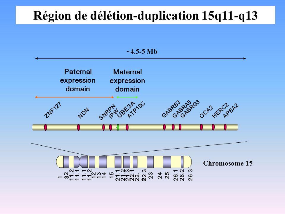 Région de délétion-duplication 15q11-q13
