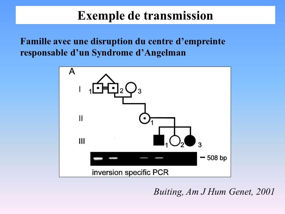 Exemple de transmission