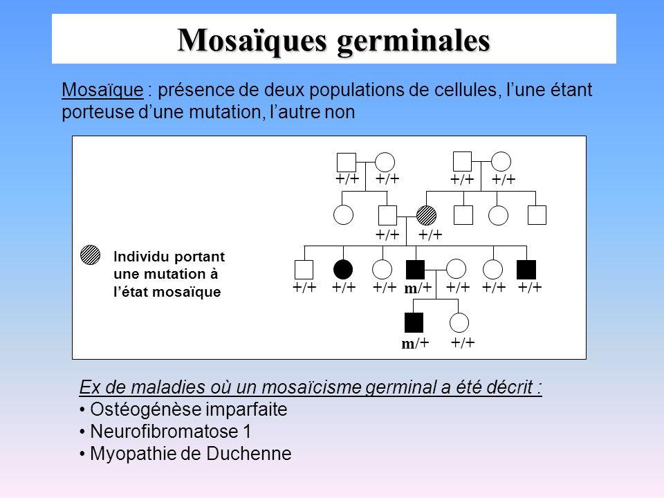 Mosaïques germinales Mosaïque : présence de deux populations de cellules, l'une étant porteuse d'une mutation, l'autre non.