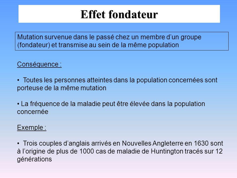 Effet fondateur Mutation survenue dans le passé chez un membre d'un groupe (fondateur) et transmise au sein de la même population.