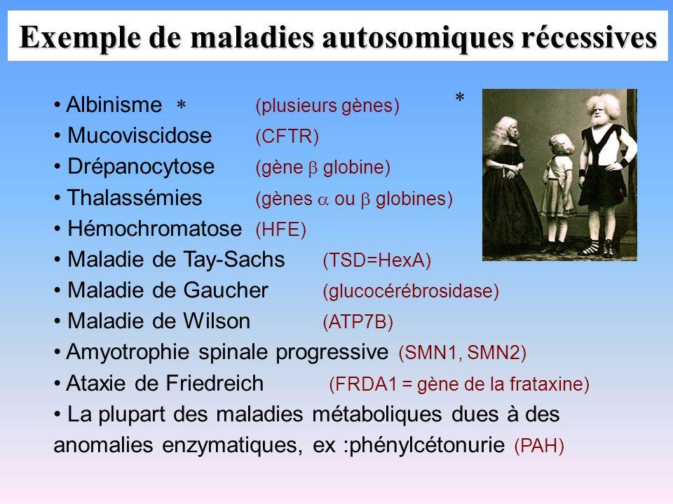 Exemple de maladies autosomiques récessives