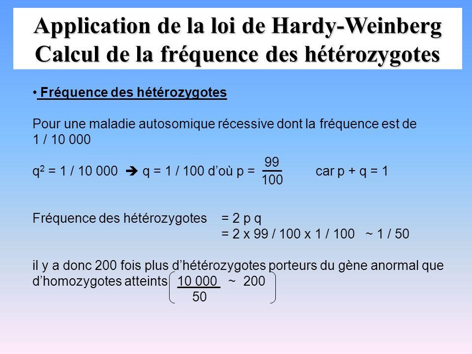 Application de la loi de Hardy-Weinberg Calcul de la fréquence des hétérozygotes
