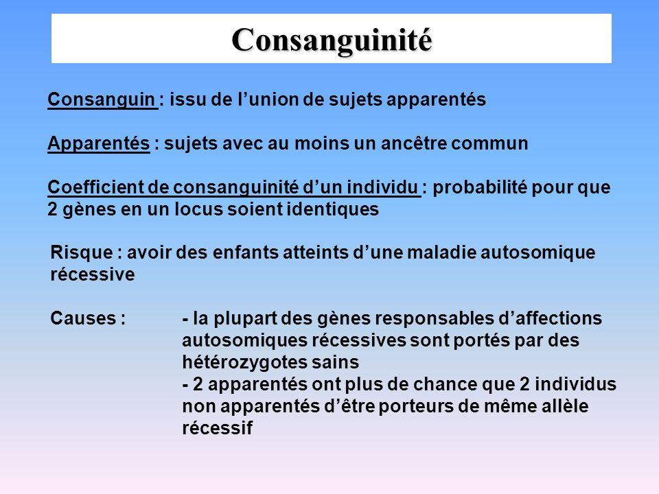 Consanguinité Consanguin : issu de l'union de sujets apparentés