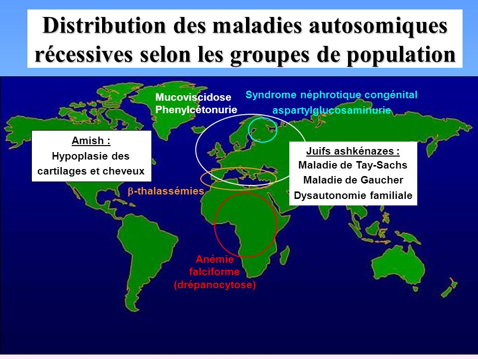 Distribution des maladies autosomiques récessives selon les groupes de population