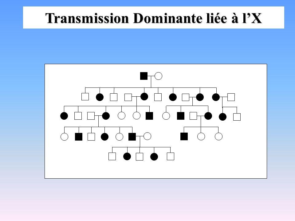 Transmission Dominante liée à l'X