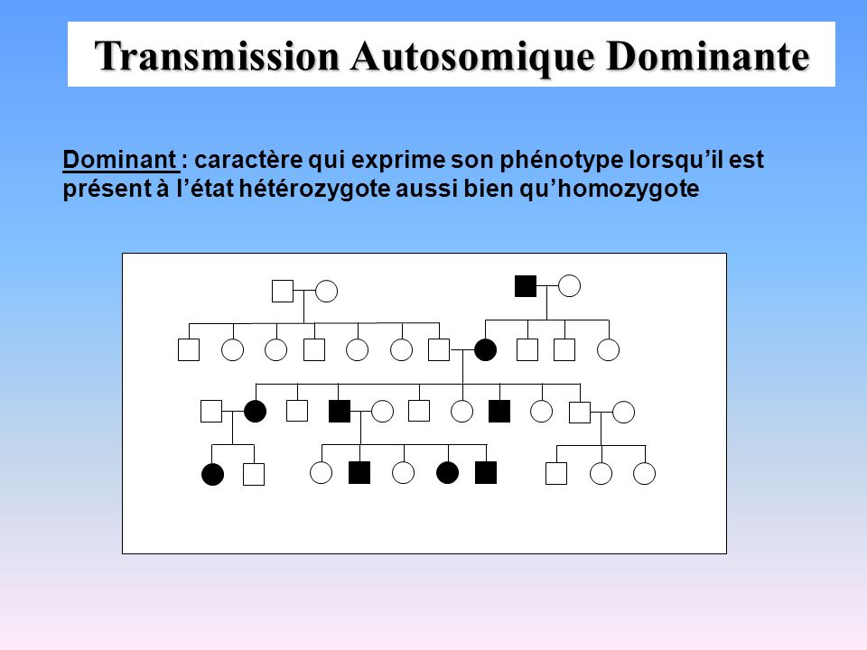 Transmission Autosomique Dominante
