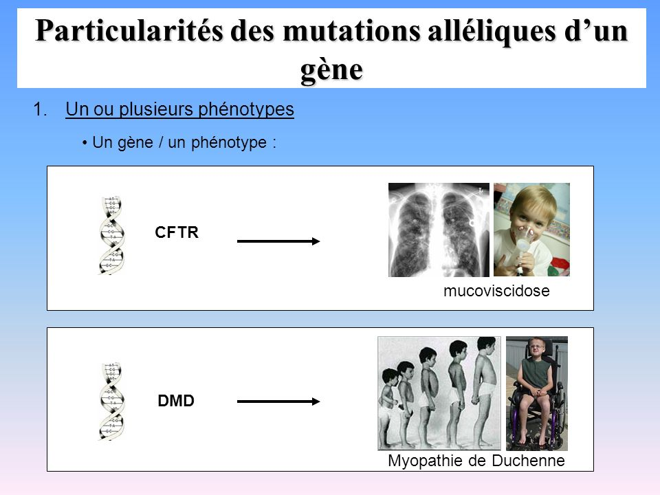 Particularités des mutations alléliques d'un gène