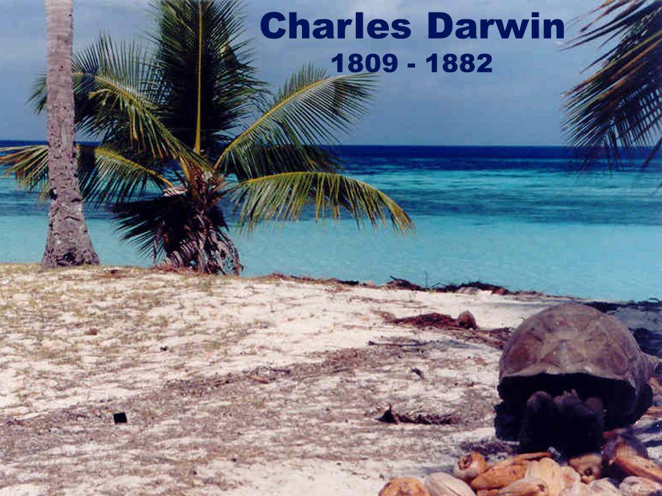 Charles Darwin 1809 - 1882