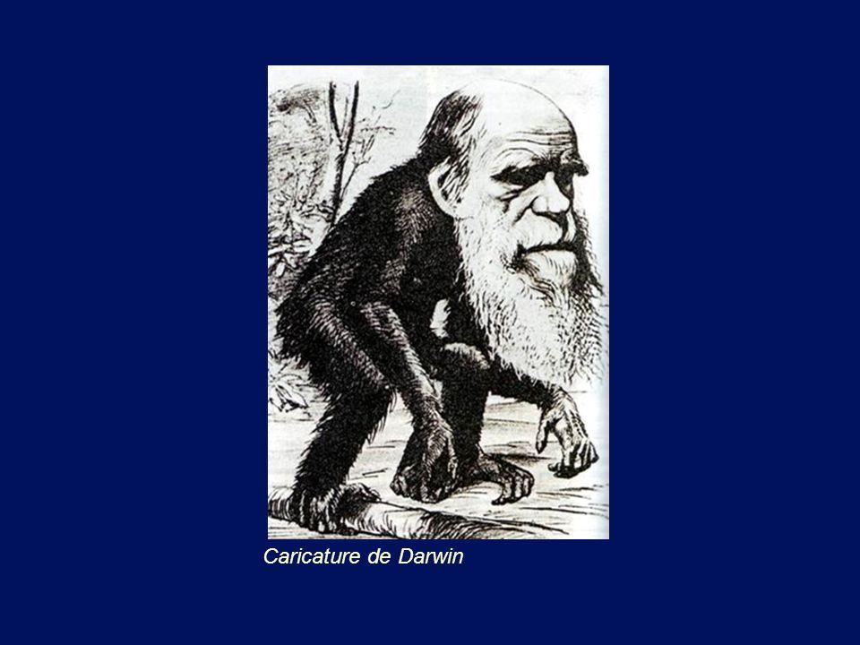 Caricature de Darwin