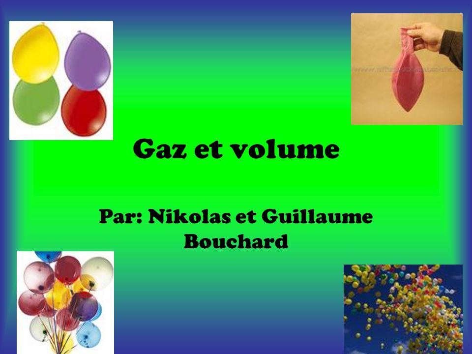 Par: Nikolas et Guillaume Bouchard
