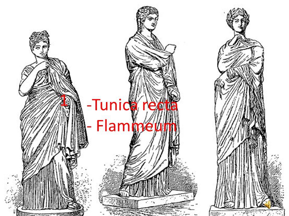 1 Tunica recta Flammeum