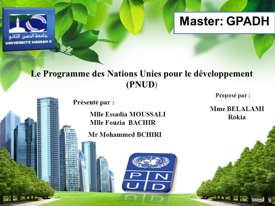Le Programme des Nations Unies pour le développement (PNUD)