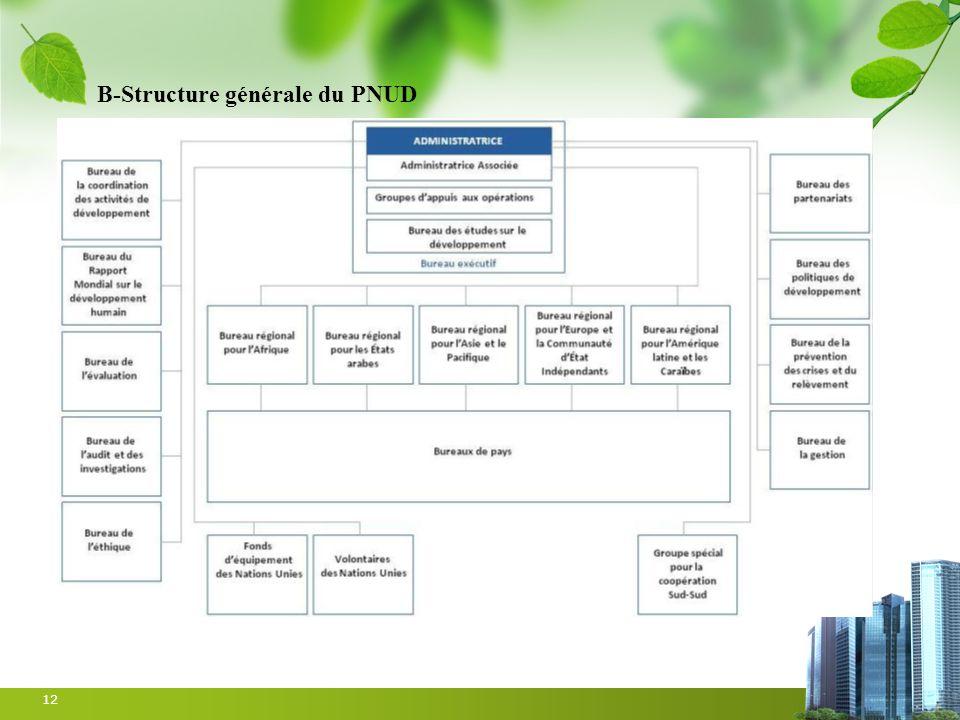 B-Structure générale du PNUD