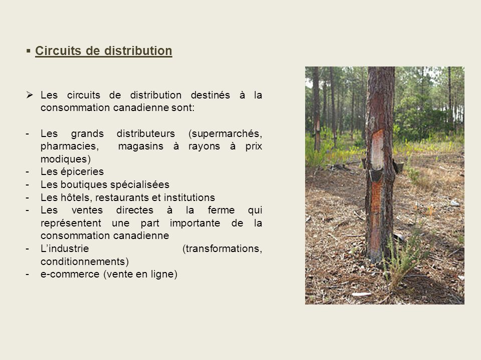 Circuits de distribution