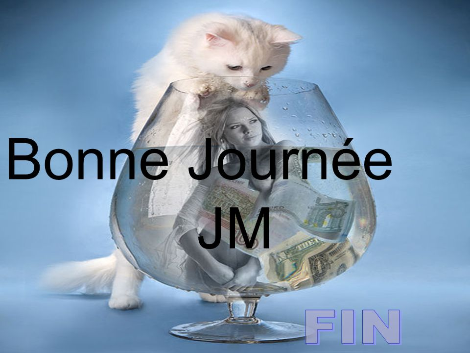 Bonne Journée JM FIN