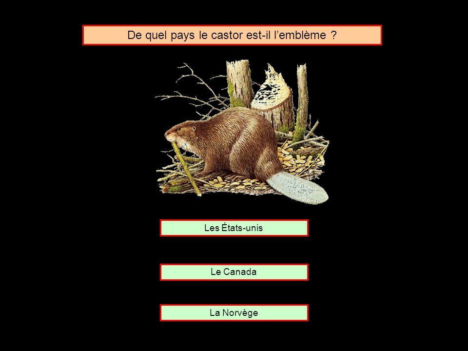 De quel pays le castor est-il l'emblème