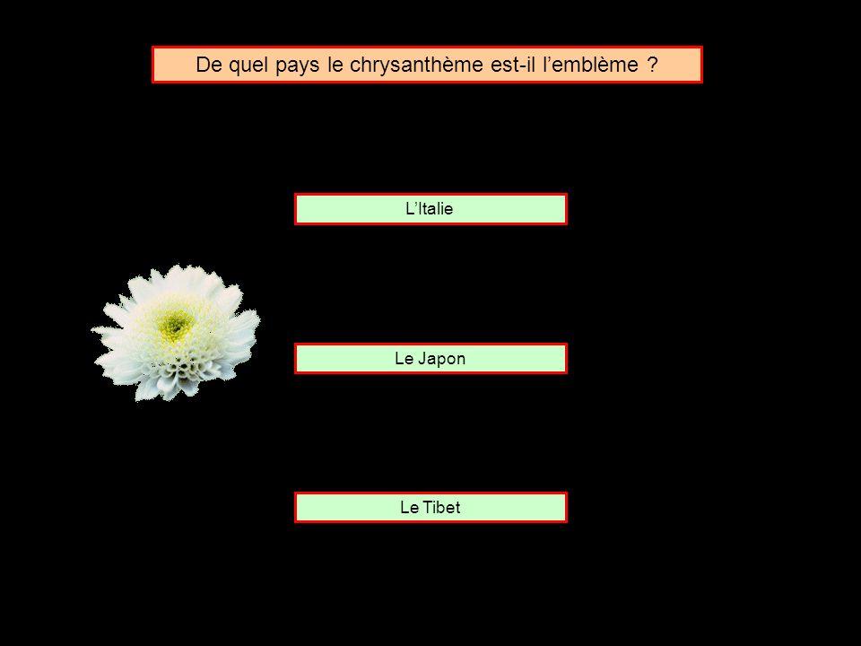 De quel pays le chrysanthème est-il l'emblème