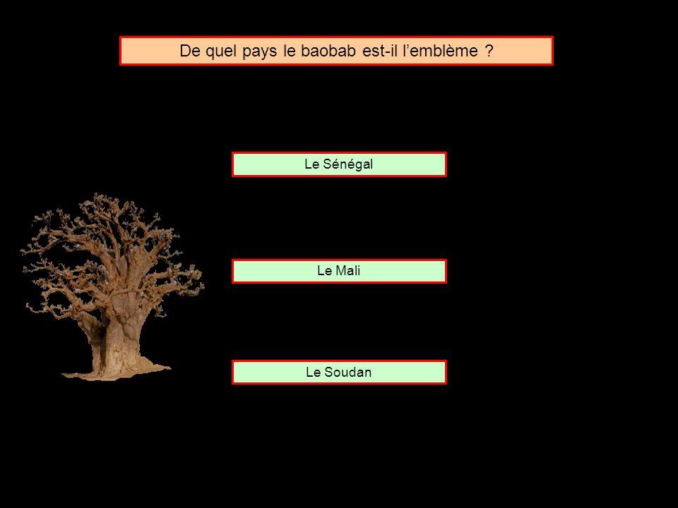 De quel pays le baobab est-il l'emblème