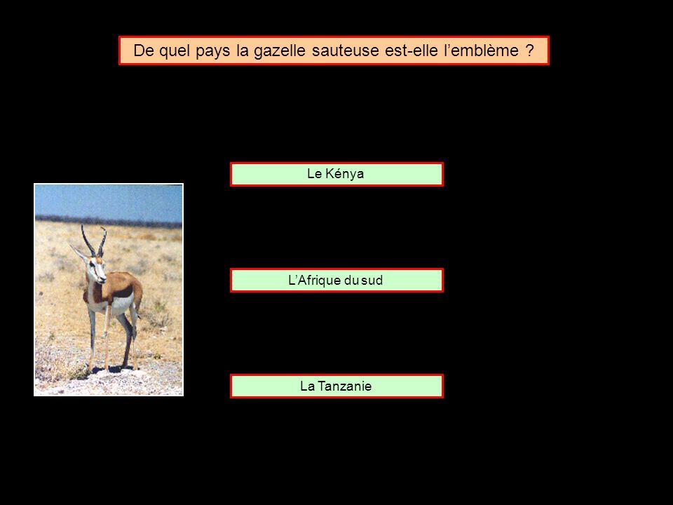 De quel pays la gazelle sauteuse est-elle l'emblème