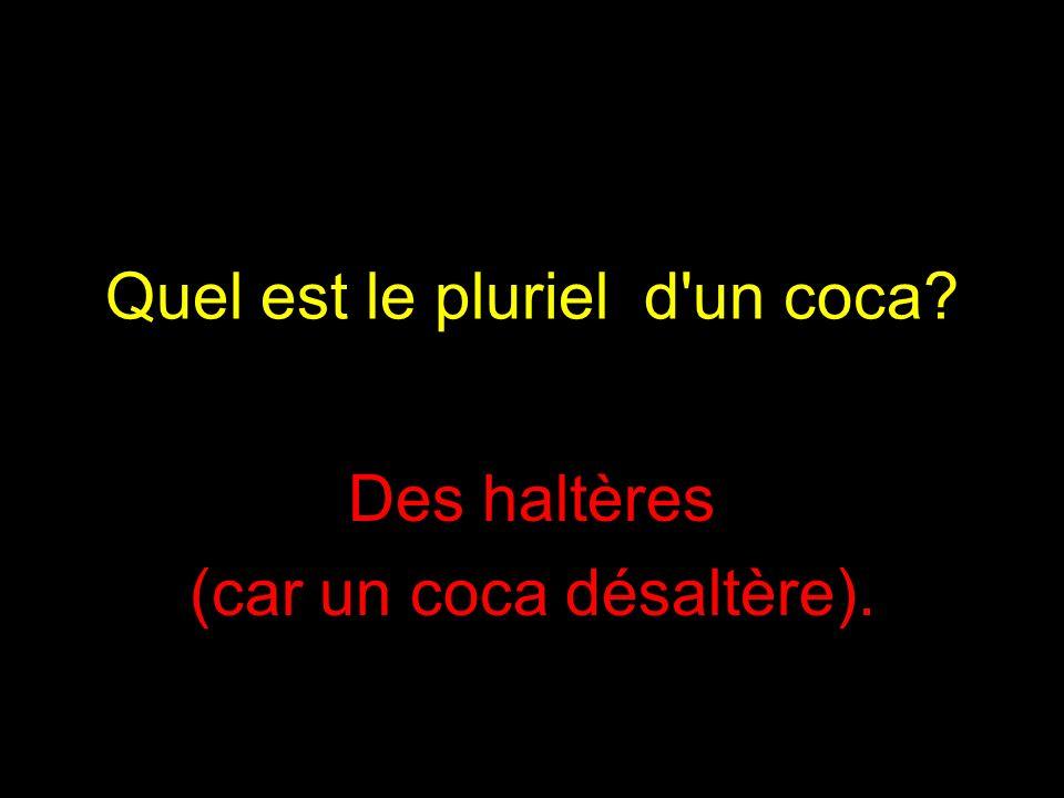 Quel est le pluriel d un coca