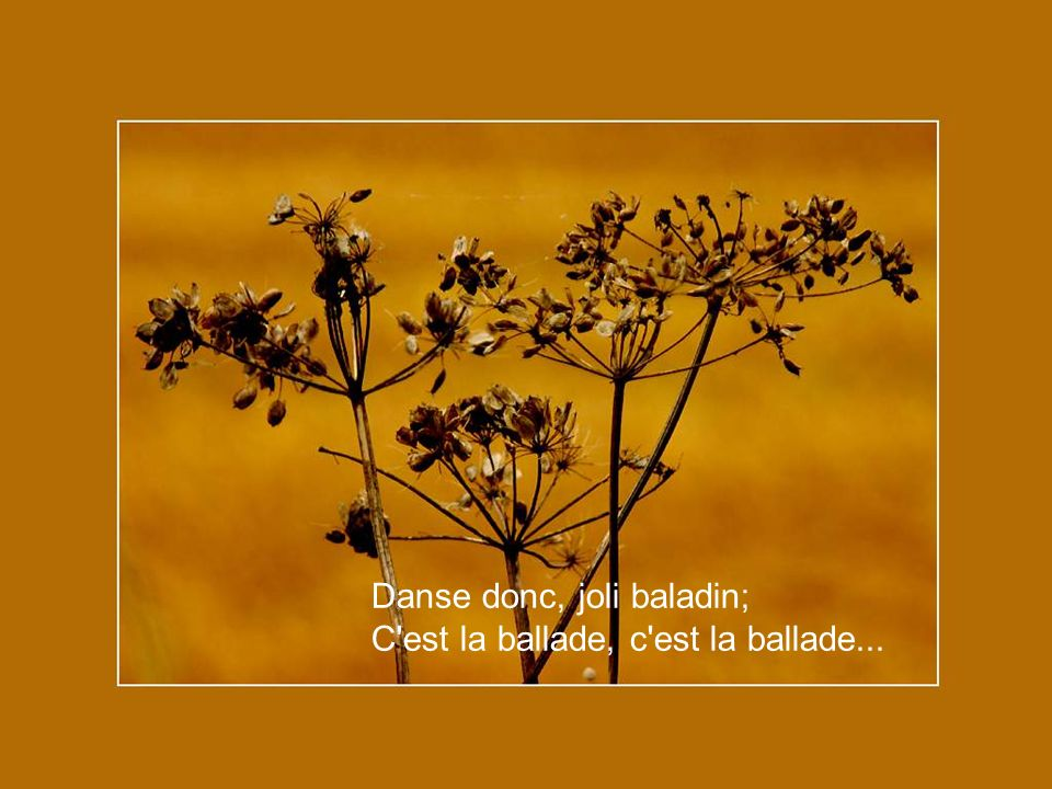 Danse donc, joli baladin;