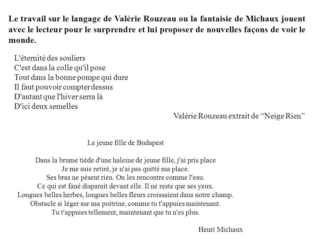 Le travail sur le langage de Valérie Rouzeau ou la fantaisie de Michaux jouent avec le lecteur pour le surprendre et lui proposer de nouvelles façons de voir le monde.