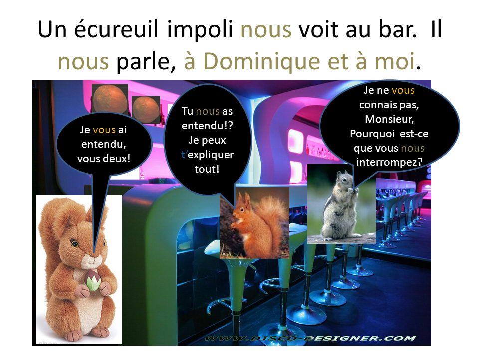 Un écureuil impoli nous voit au bar