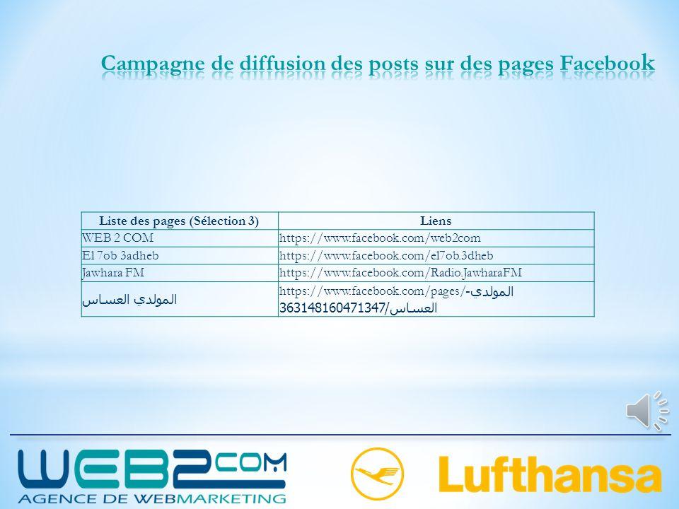 Campagne de diffusion des posts sur des pages Facebook