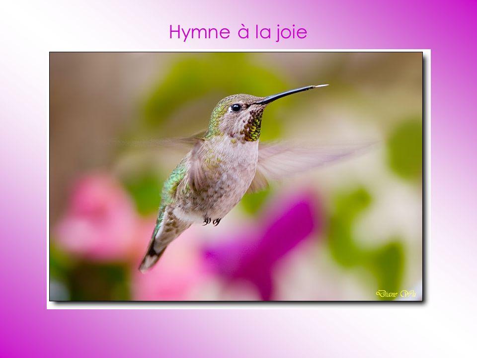 Hymne à la joie