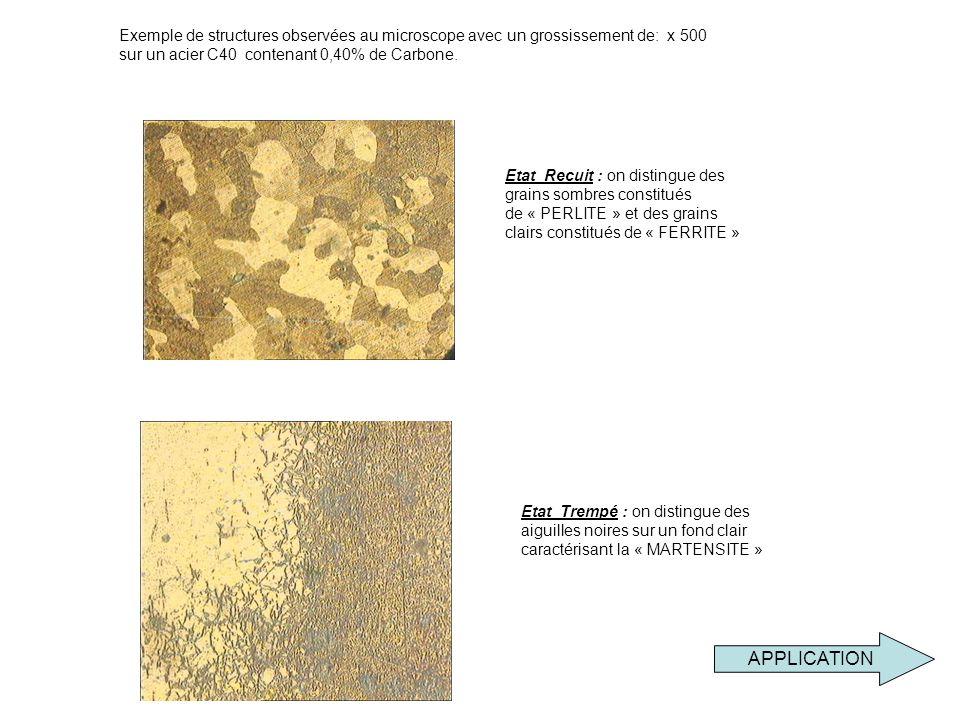 Exemple de structures observées au microscope avec un grossissement de: x 500