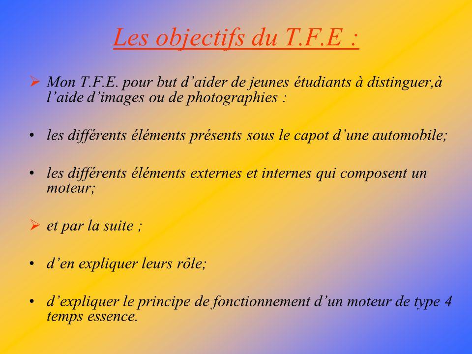 Les objectifs du T.F.E : Mon T.F.E. pour but d'aider de jeunes étudiants à distinguer,à l'aide d'images ou de photographies :
