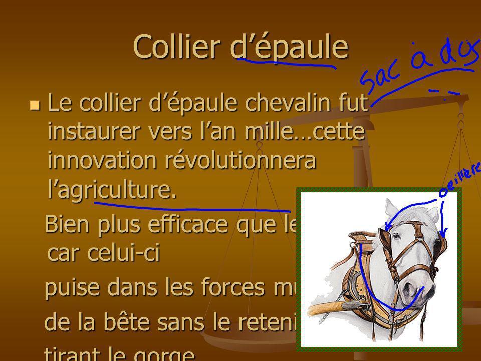 Collier d'épaule Le collier d'épaule chevalin fut instaurer vers l'an mille…cette innovation révolutionnera l'agriculture.