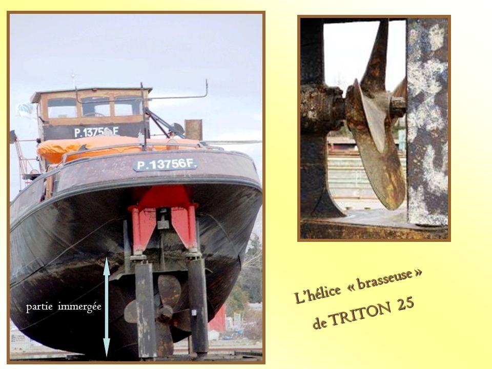 L'hélice « brasseuse » de TRITON 25 partie immergée