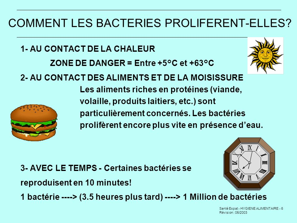 COMMENT LES BACTERIES PROLIFERENT-ELLES