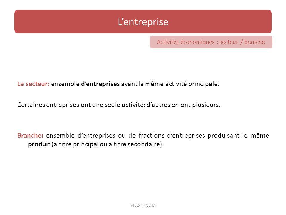 Activités économiques : secteur / branche