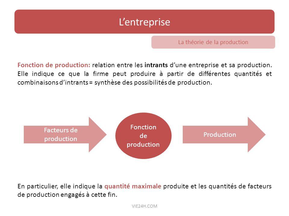 L'entreprise La théorie de la production.
