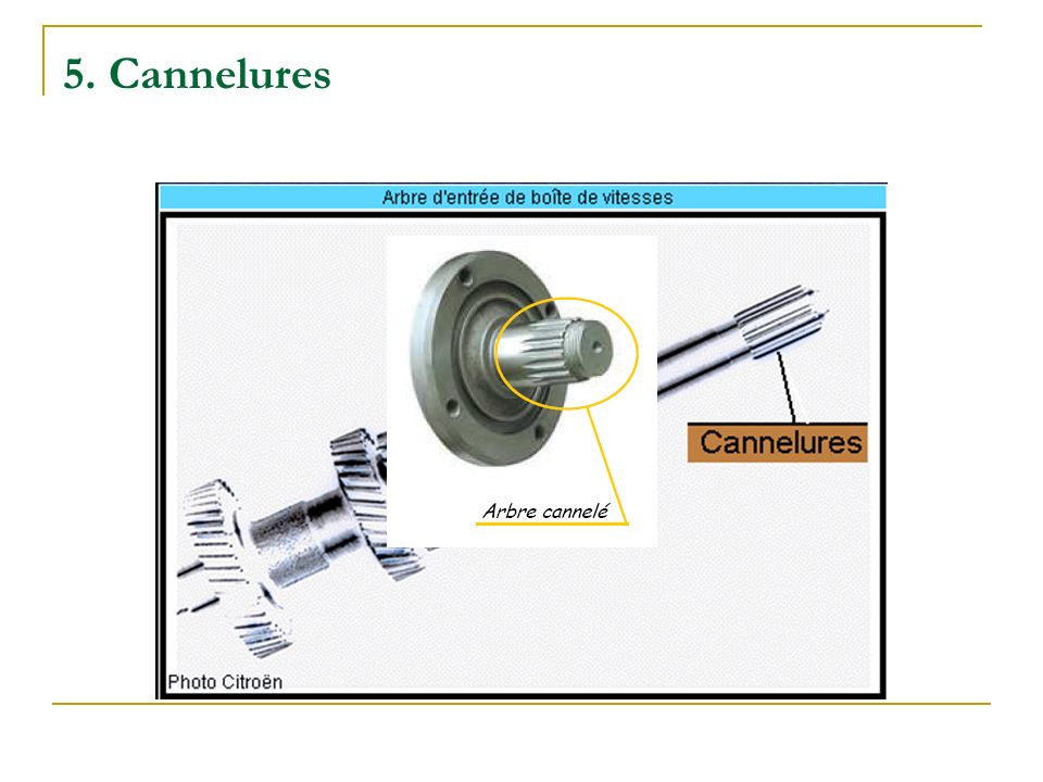 5. Cannelures
