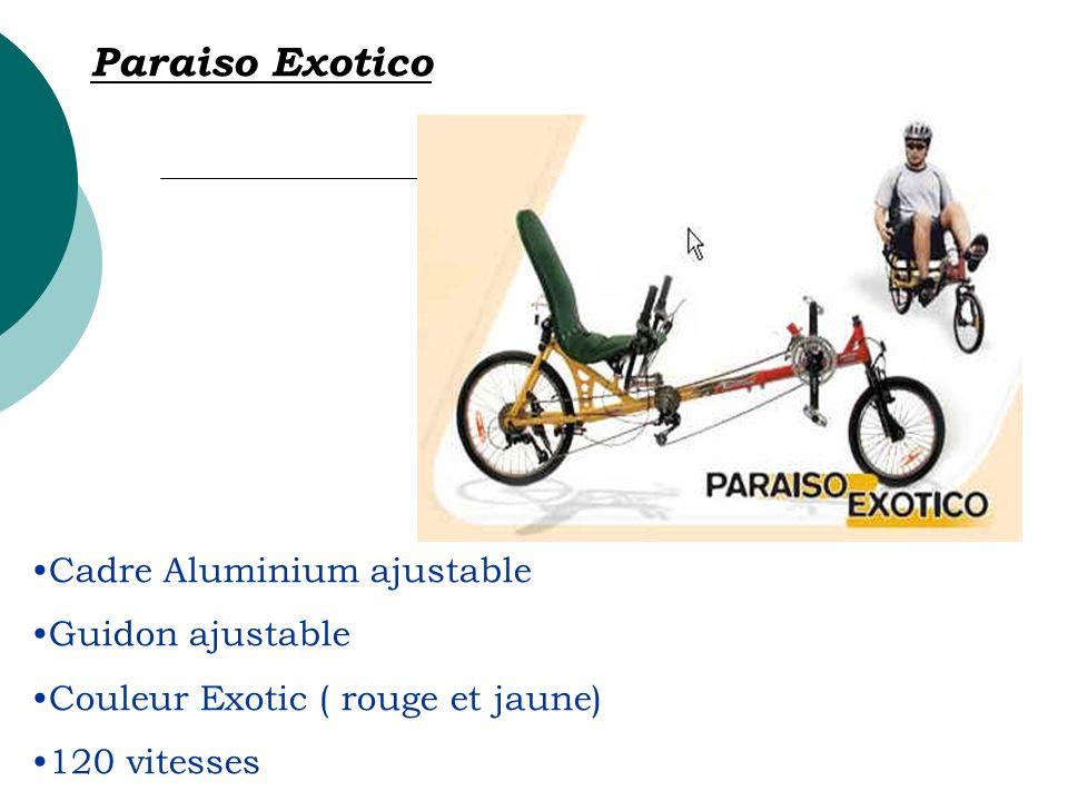 Paraiso Exotico Cadre Aluminium ajustable Guidon ajustable
